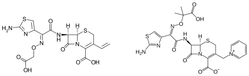 cefalosporins