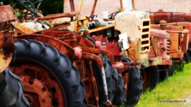 Les tracteurs du Médoc