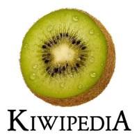 Kiwipedia, TimTam & Bilan