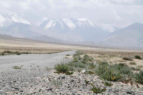Plateau du Pamir