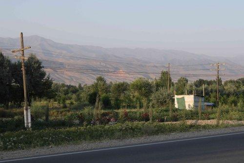 Vallée de Padjikent
