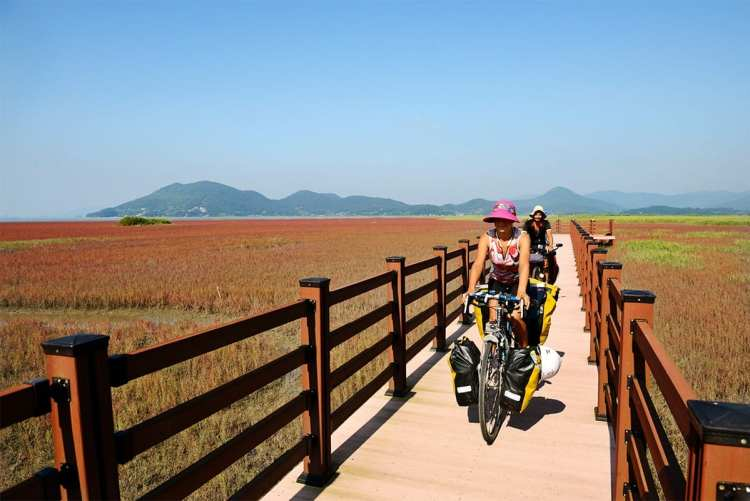 bicycle touring South Korea