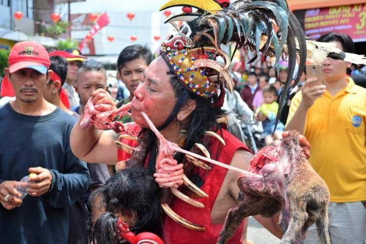 Dog Eating Lantern Festival Indonesia Borneo