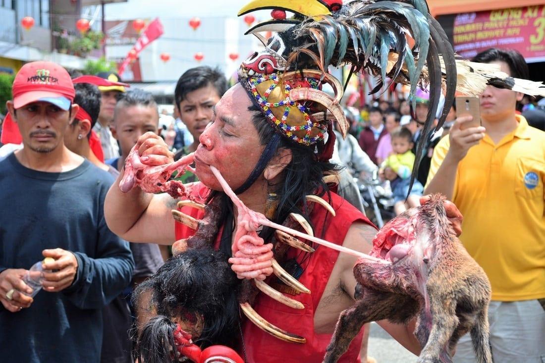Dog Eating Lantern Festival Indonesia Borneo