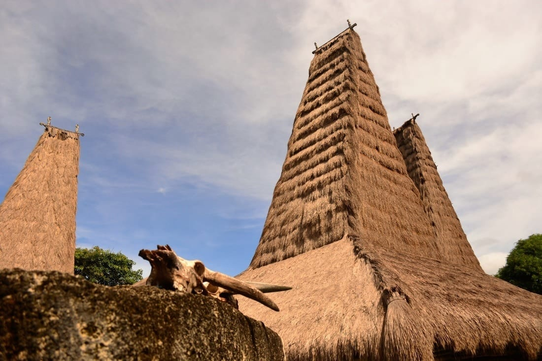 the Pasola of Sumba island - where the blood fertilize the ancestor's land 9