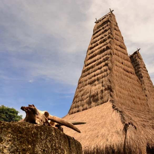 the Pasola of Sumba island - where the blood fertilize the ancestor's land 11