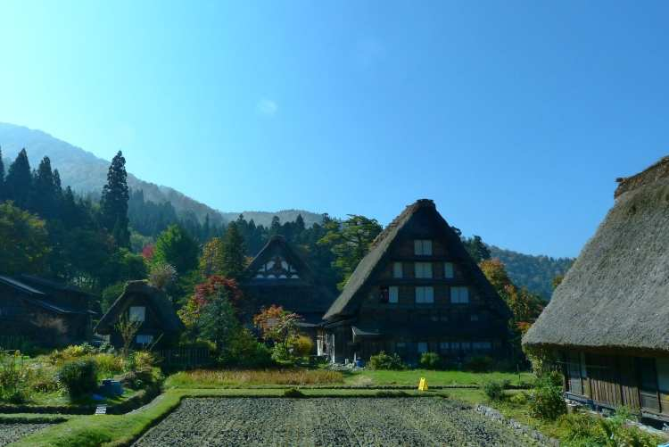 Gassho houses of Shirakawa Go