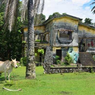 Escursione al Parco Nazionale di Bako e cosa vedere a Kuching - Borneo Malese 10