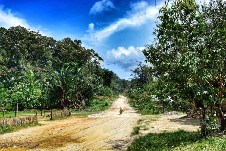 bicycle touring Borneo