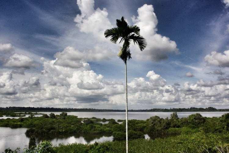 Parco Nazionale Loagan Bunut