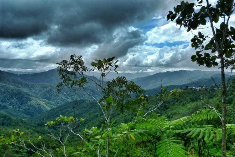 Crocker Mountains Range Sabah Borneo
