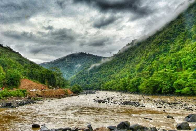 Borneo train Padas river