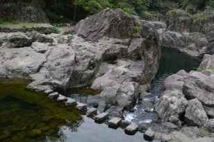 wolongxia