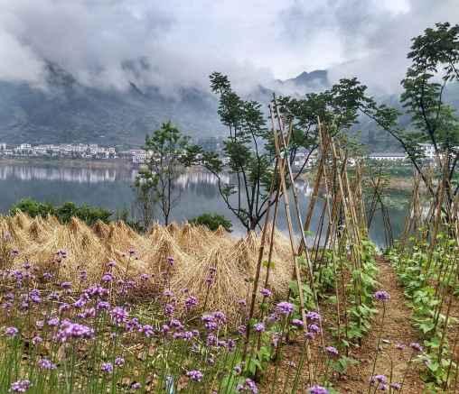 Lago mille isole