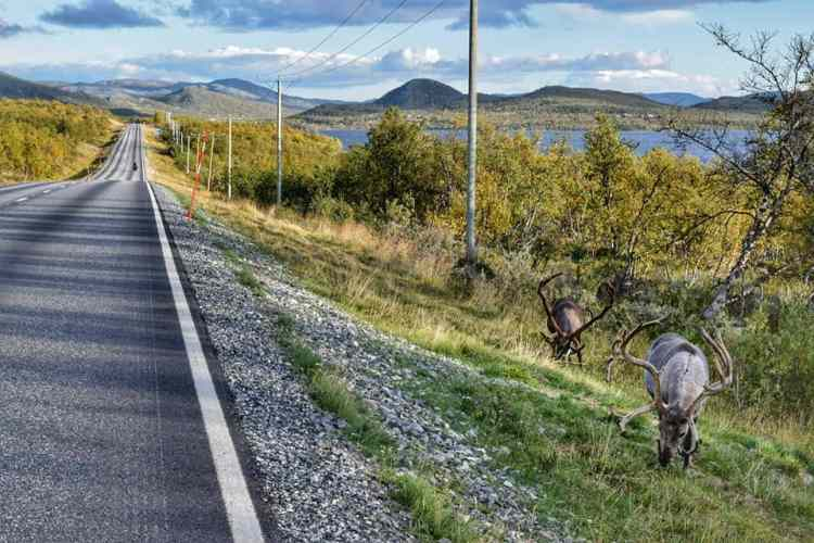 finland by bike
