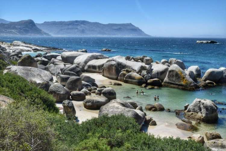 swimming beach cape town