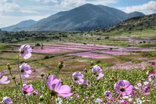 Lesotho Tourism