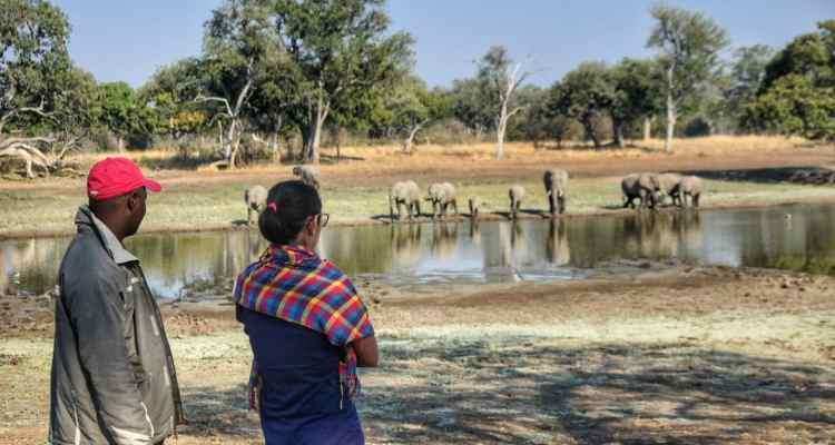 Safari Zambia South Luangwa