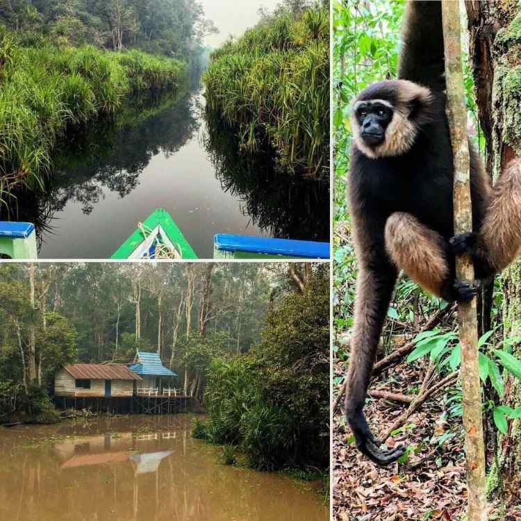 31 things to do in Borneo: adventure travel Borneo off-the-beaten-path 53