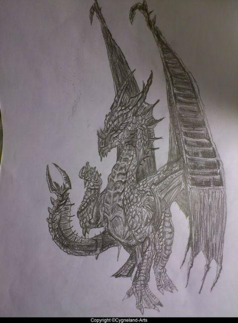Dessins Au Crayon 224 Papier