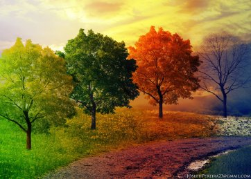 land_of_all_seasons_by_joseph_pereira-d47jxd0