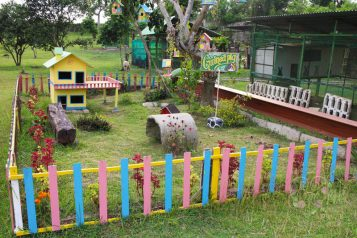 guinea pig playground