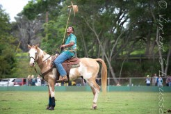 The mallets are used for many other things, besides scratching those hard to reach spots on your horses backside.