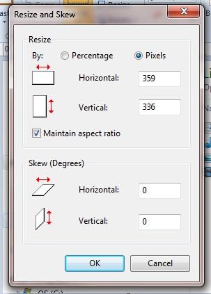 screenshot-in-paint-resize-option.jpg