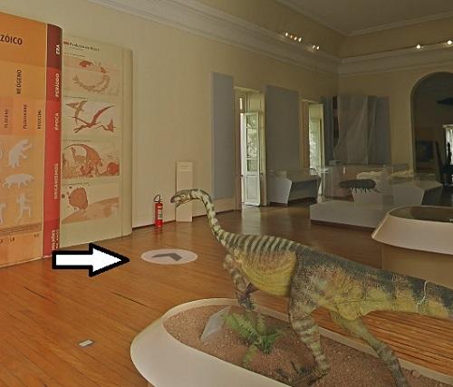 museum-gallery-move.jpg