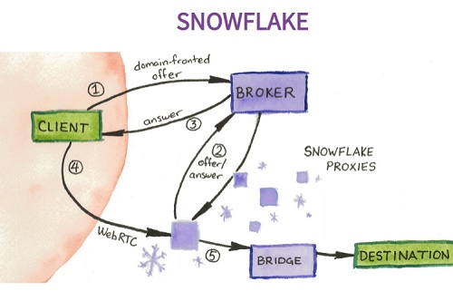 snow-flake-graph.jpg