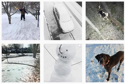 snowledo.jpg