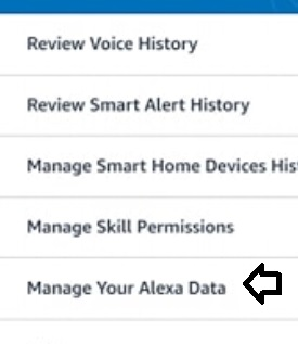 manage-your-alexa-data