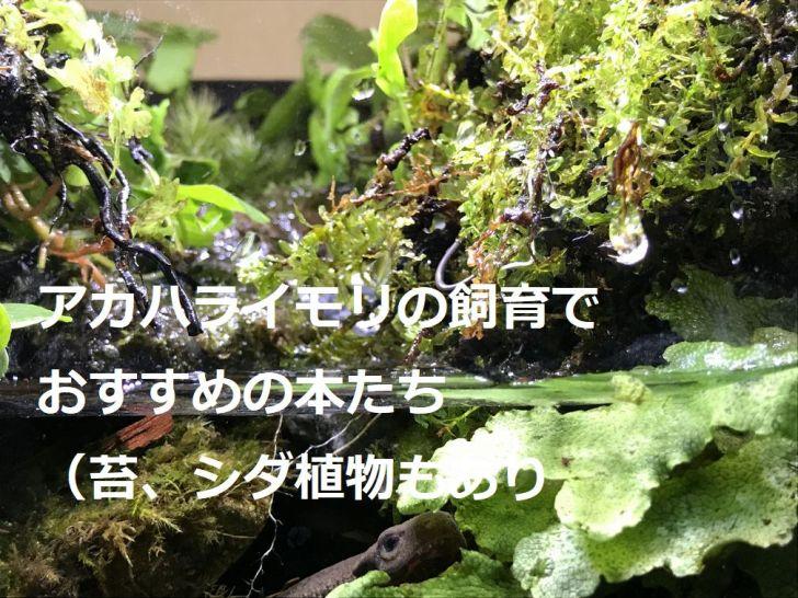 アカハライモリの飼育でおすすめの本たち(苔、シダ植物もあり)