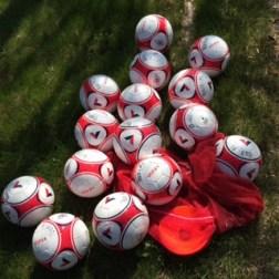 soccer named balls
