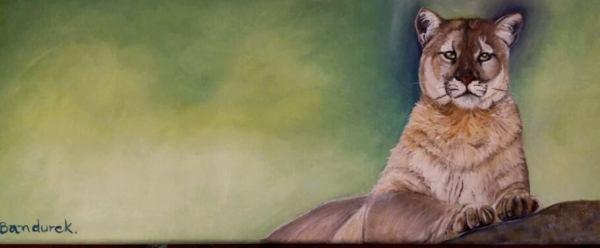 Cougar - oil painting - CynthiaBandurek