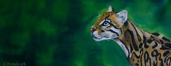 Ocelot- Oil painting - Cynthia Bandurek