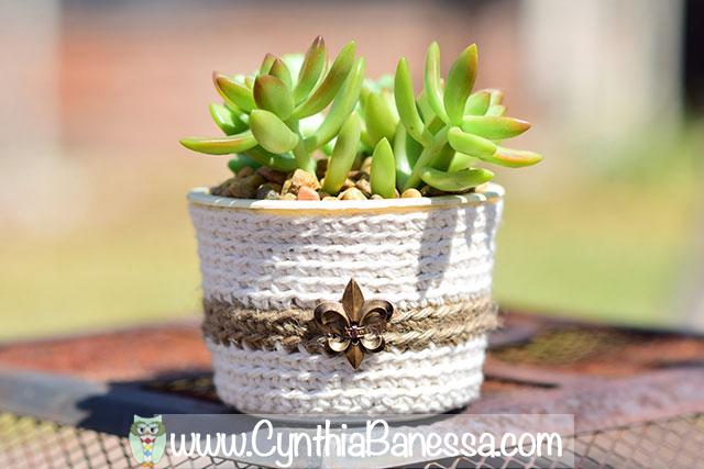 succulents9