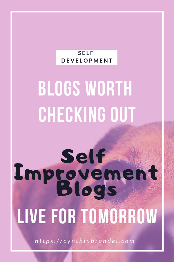 Self Improvement Blogs