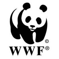 WWF_panda logo