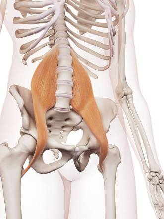 ウォーキング 筋肉痛 大腰筋