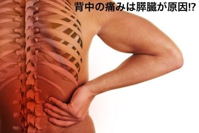 背中の痛みは膵炎や膵臓ガンが原因かも,病気や症状を解説
