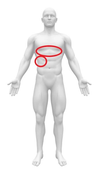 急性腹症 重症急性胆管炎 心窩部痛 右上腹部痛