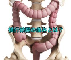 横行結腸の痛みとは?その位置や病気を解剖図で解説!