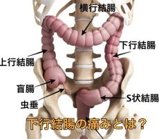 下行結腸の痛みとは?解剖図による位置や病気まで解説!