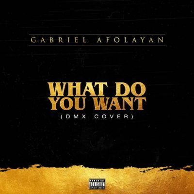 GABRIEL AFOLAYAN – WHAT DO YOU WANT [DMX X SISQO'S COVER]