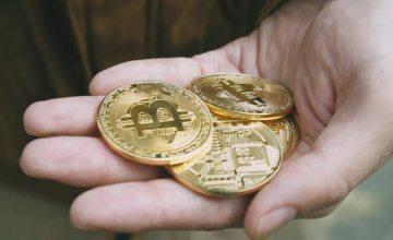 Artículo: ¡Gana dinero en Bitcoin Cash (BCH) utilizando estas plataformas web!