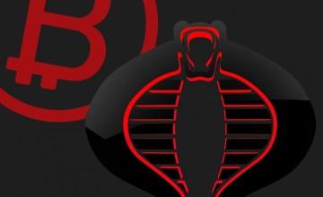 Copropietario de Bitcoin.org «Cobra» decide abandonar la web para fin de año