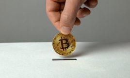 """Empresas e instituciones pro-BCH planean crear la """"Fundación Bitcoin Cash"""""""