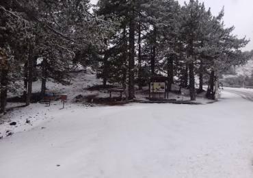 Pierwszy śnieg tej zimy!