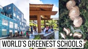 Πράσινα σχολεία: μια ματιά στο μέλλον της «βιώσιμης» εκπαίδευσης